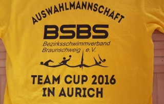 team-cup-2016